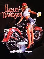 ハーレーダビッドソンPin Up Wash Babeオートバイメタルサイン