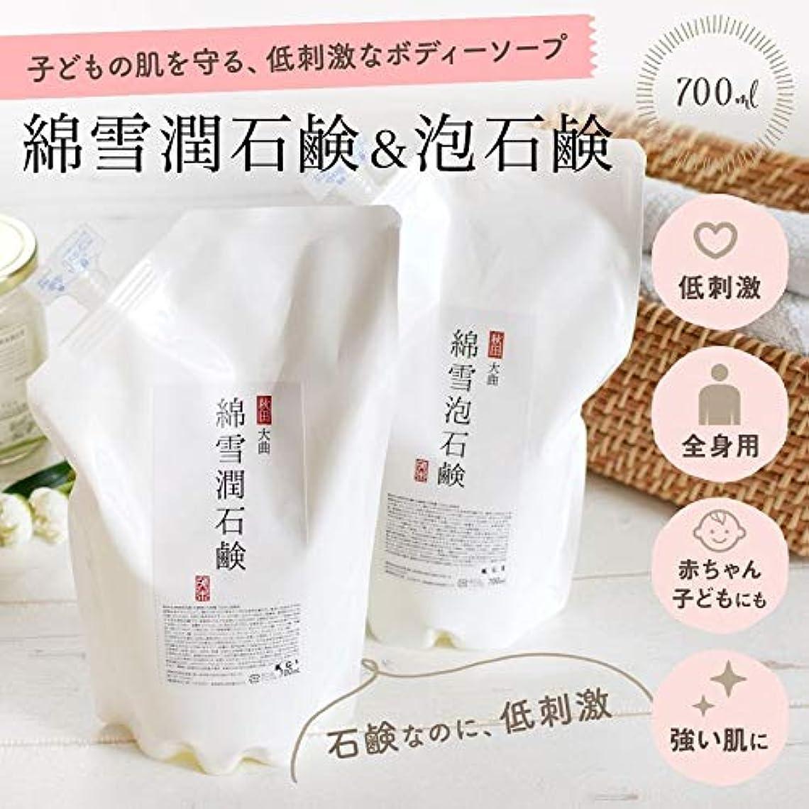 幻想的デコレーション簿記係綿雪潤石鹸700mL(液状タイプ)