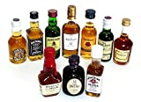 輸入ウイスキー ミニチュアボトル 10本セット 50ml