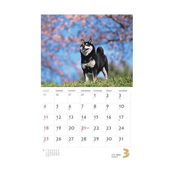 カレンダー2018 柴犬 (ヤマケイカレンダー...の紹介画像5