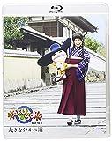 saku saku Ver.10.0/大きな分かれ道[Blu-ray/ブルーレイ]