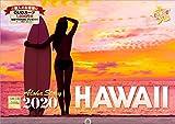 ハワイ Aloha Story 2020年 カレンダー 壁掛け SD-4 (使用サイズ594x420mm) 風景