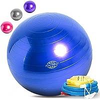 バランスボール フィットネスボール ヨガボール ジムボール ダイエットボール 55cm 65cm 75cm 3サイズ ピンク ブルー パープル シルバーグレー 4色 フットポンプ付き [並行輸入品]