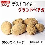 じゃがいも 種芋 デストロイヤー グランドペチカ 500g ジャガイモ