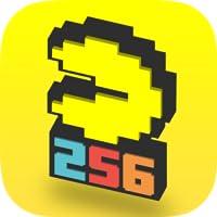 PAC-MAN 256 - Endless Arcade Maze