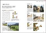 写真上手になるための構図とレンズのきほんBOOK~おしゃれ、かわいいをかたちにする。~ 画像