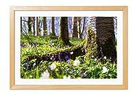 森林、ワイルドフラワー、木、苔 風景の写真 木製フレーム 額縁 壁掛け ホーム装飾画 装飾的な絵画 壁の装飾 ポスター(40x60cm 原色)