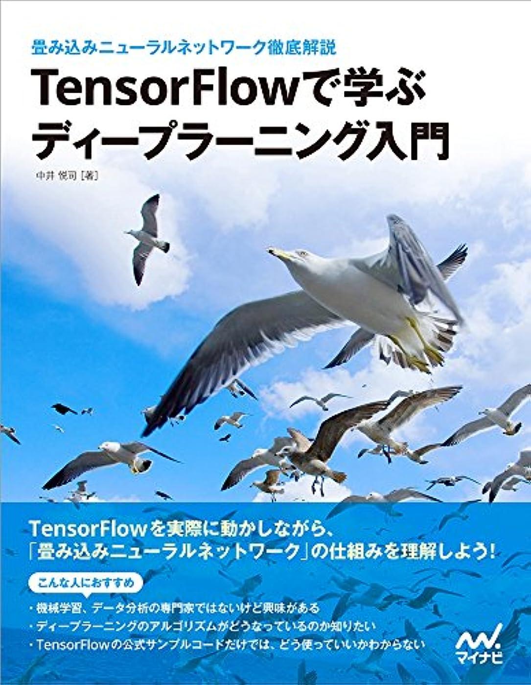 送金特異性審判TensorFlowで学ぶディープラーニング入門 ~畳み込みニューラルネットワーク徹底解説~