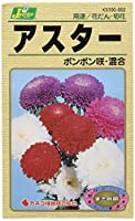 カネコ種苗 園芸・種 KS100シリーズ アスター ボンボン咲・混合 草花100 002