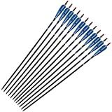 """31"""" Handmade Carbon Arrows Turkey Feather Screwed Tip Spine 500 for Outdoor Hunting Archery"""