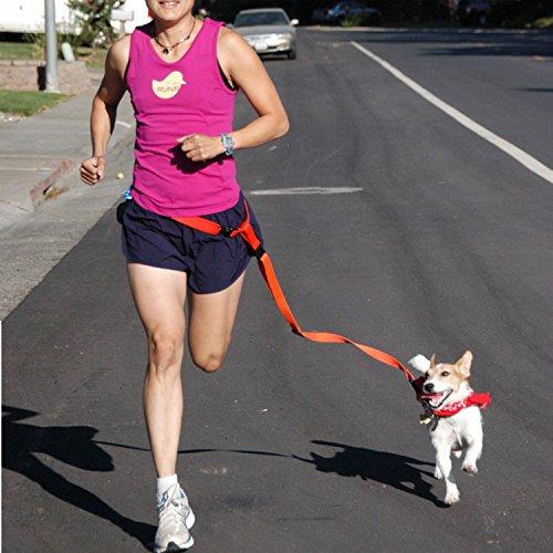 腰リード犬用猫用 ウエストリード ジョギングリード 伸縮性 フックの留め方 多機能リード 手ぶらでお散歩 反射付き お出かけ