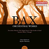 Orchestral Works 3 画像