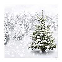 Allenjoy 薄いビニール製クリスマスバックドロップ クリスマスイーブ背景
