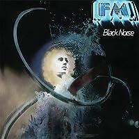 Black Noise [12 inch Analog]