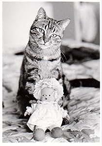 ART UNLIMITED ポストカード (猫×人形) B1417