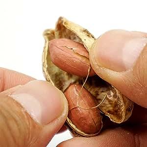 千葉県産 ピーナッツ 300g うす皮付き 無塩 ピーナッツ