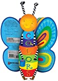 Colors: A Butterfly-Shaped Book