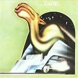CAMEL 画像