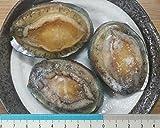 生食用 冷凍蝦夷鮑 1kg(26-30粒)解凍後そのままお召し上がり頂けます。限定品 エゾあわび