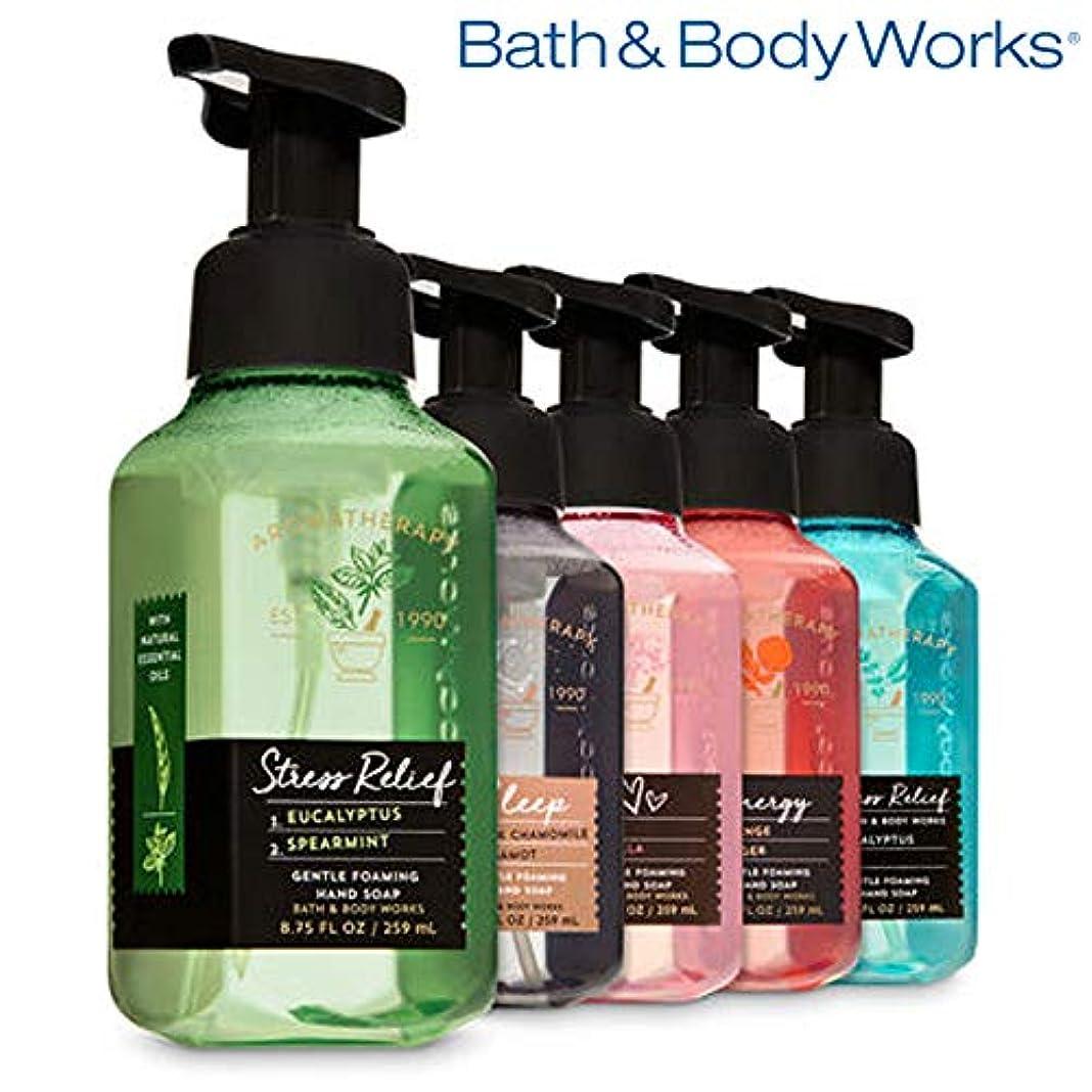 くびれた税金天AROMATHERAPY Gentle Foaming Hand Soap, 5-Pack [海外直送品]