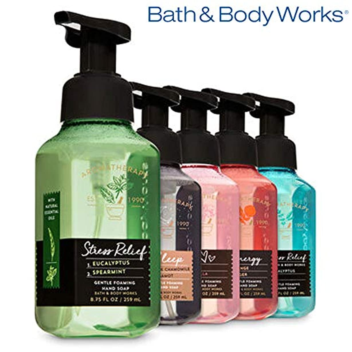 先投資豊富なAROMATHERAPY Gentle Foaming Hand Soap, 5-Pack [海外直送品]
