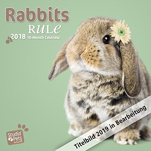 Rabbits Rule - Kaninchen 2019 - 18-Monatskalender: Original Myrna-Kalender