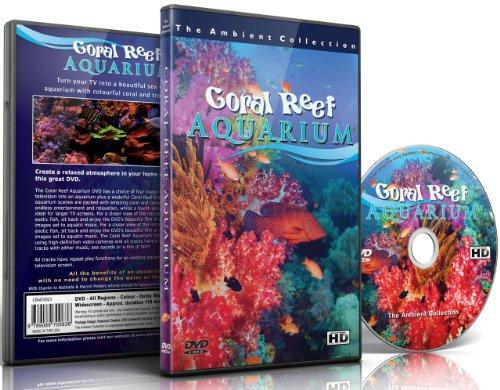 音楽と自然音のコーラルリーフ水族館110分の HD の水槽
