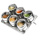 NOPTEG 調味料入れ 6点セット ステンレス製 調味缶 塩、胡椒入れ 保存容器 アウトドア バーベキュー 山登り コンパクト
