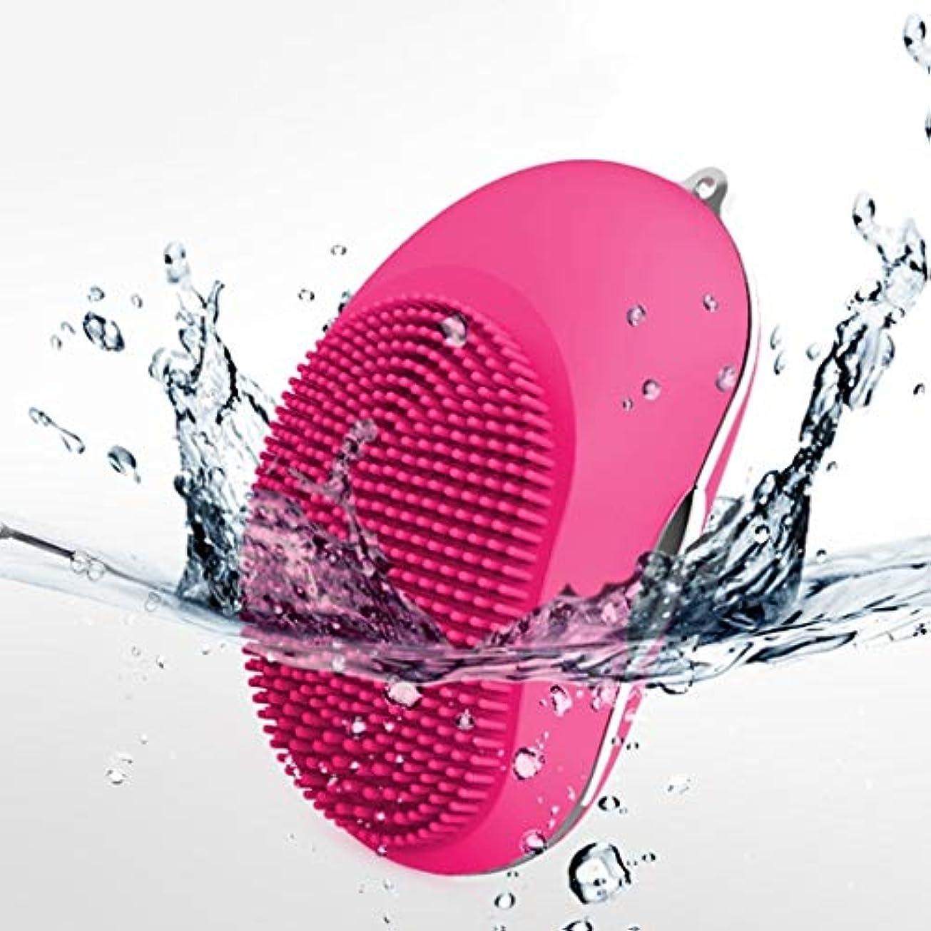 ほのめかす入学する非効率的な電気シリコーンクレンジングインスツルメント、ポータブルシリコンUsbフェイシャルマッサージャー超音波洗浄ディープエクスフォリエイティングジェントル&クレンジングフェイシャルフォースキンタイプ (Color : Rose)