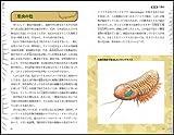 ぞわぞわした生きものたち 古生代の巨大節足動物 (サイエンス・アイ新書) 画像