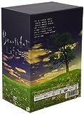 ビューティフルライフ〜ふたりでいた日々〜 DVD-BOX