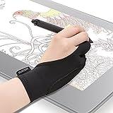 エレコム 2本指グローブ 手袋 Lサイズ 誤動作防止機能付 液タブ/板タブ/ペンタブ/iPad/スタイラスペン/Apple Pencilの使用に最適 左利き右利き両用 TB-GV2L