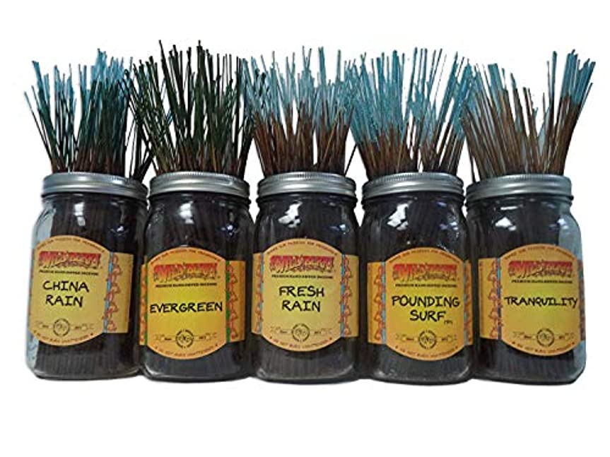 エイリアン飲み込む一瞬Wildberry Incense Sticks Fresh & Clean Scentsセット# 1 : 20 Sticks各5の香り、合計100 Sticks 。