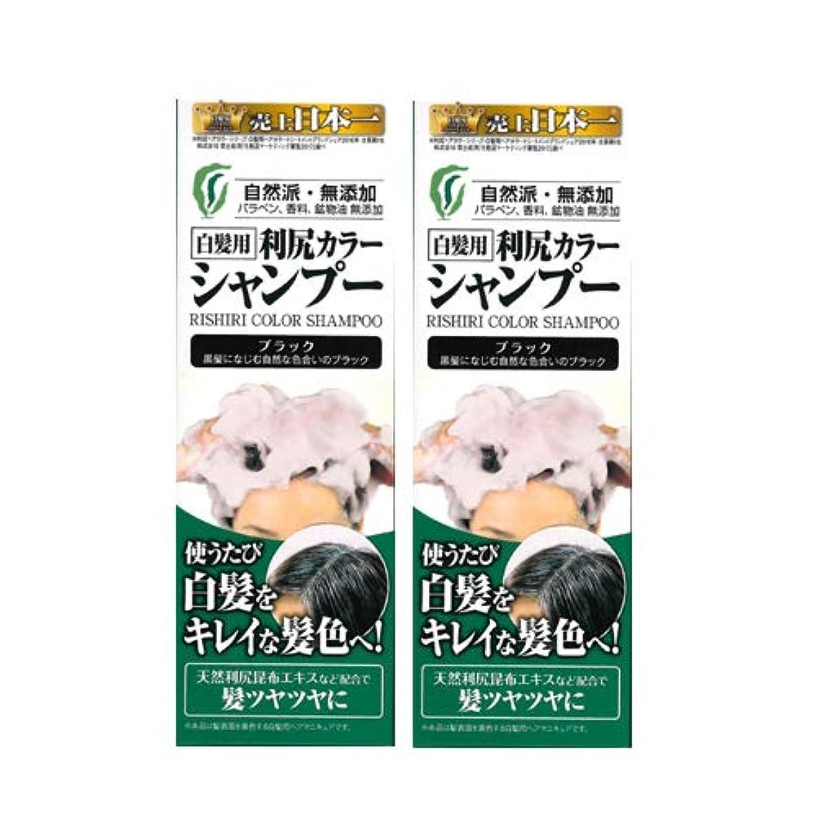 対人醸造所適合する利尻カラーシャンプー2本セット(ブラック)