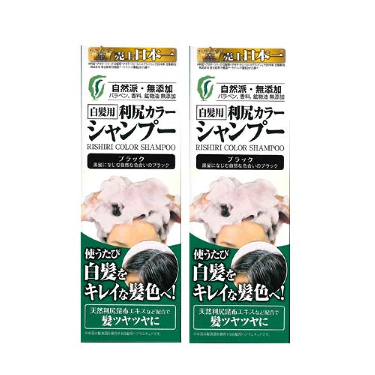 王朝郵便番号減る利尻カラーシャンプー2本セット(ブラック)