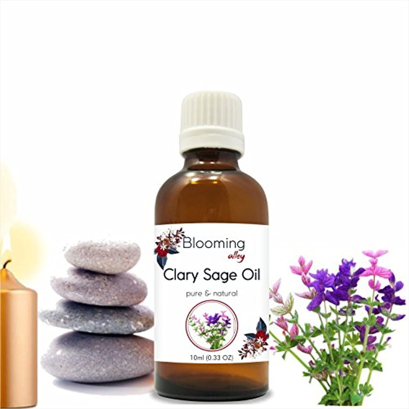 粒潜在的な子供達Clary Sage (Blooming Alley Sclarea) Essential Oil 10 ml or 0.33 Fl Oz by Blooming Alley