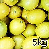 広島 大長産 なかだい農園の国産レモン 5kg