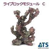 ライブロックモジュール C アクアリウム 擬岩