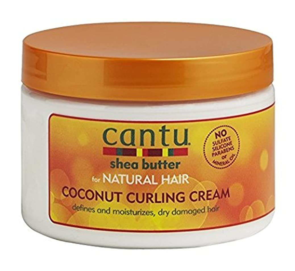 耕す署名不信Cantu Shea Butter for Natural Hair Coconut Curling Cream 340g