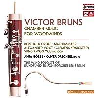 ヴィクター・ブルンス:管楽器のための室内楽作品集[2枚組]