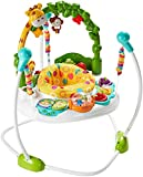 Best ベビーJumperoos - Fisher-Price Go Wild Jumperoo [並行輸入品] Review