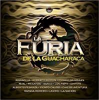 Furia De La Guacharaca