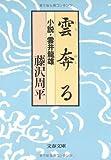 雲奔る―小説・雲井竜雄 (文春文庫 (192‐4)) 画像