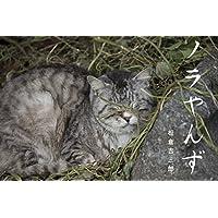 ノラやんず: ー猫写真集ー