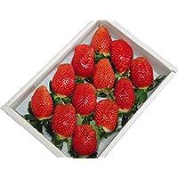 超大粒イチゴやよいひめ(大粒12個入り)(送料無料)