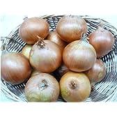 淡路島たまねぎ工房 淡路産フルーツたまねぎ 甘い玉葱 (3kg)