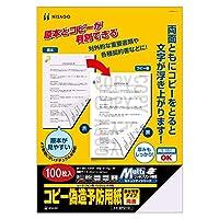 ヒサゴ コピー偽造予防用紙 浮き文字タイプ A4 両面 100枚 BP2110