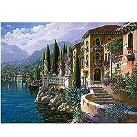 デジタル絵画を描く 家の装飾の旧市街のデジタル壁の装飾diyの絵の油絵のキャンバスの絵画40x50cm(16x20in)木枠