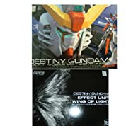 RG 1/144 デスティニーガンダム&RG 1/144 デスティニーガンダム 拡張ユニット「光の翼」 セット
