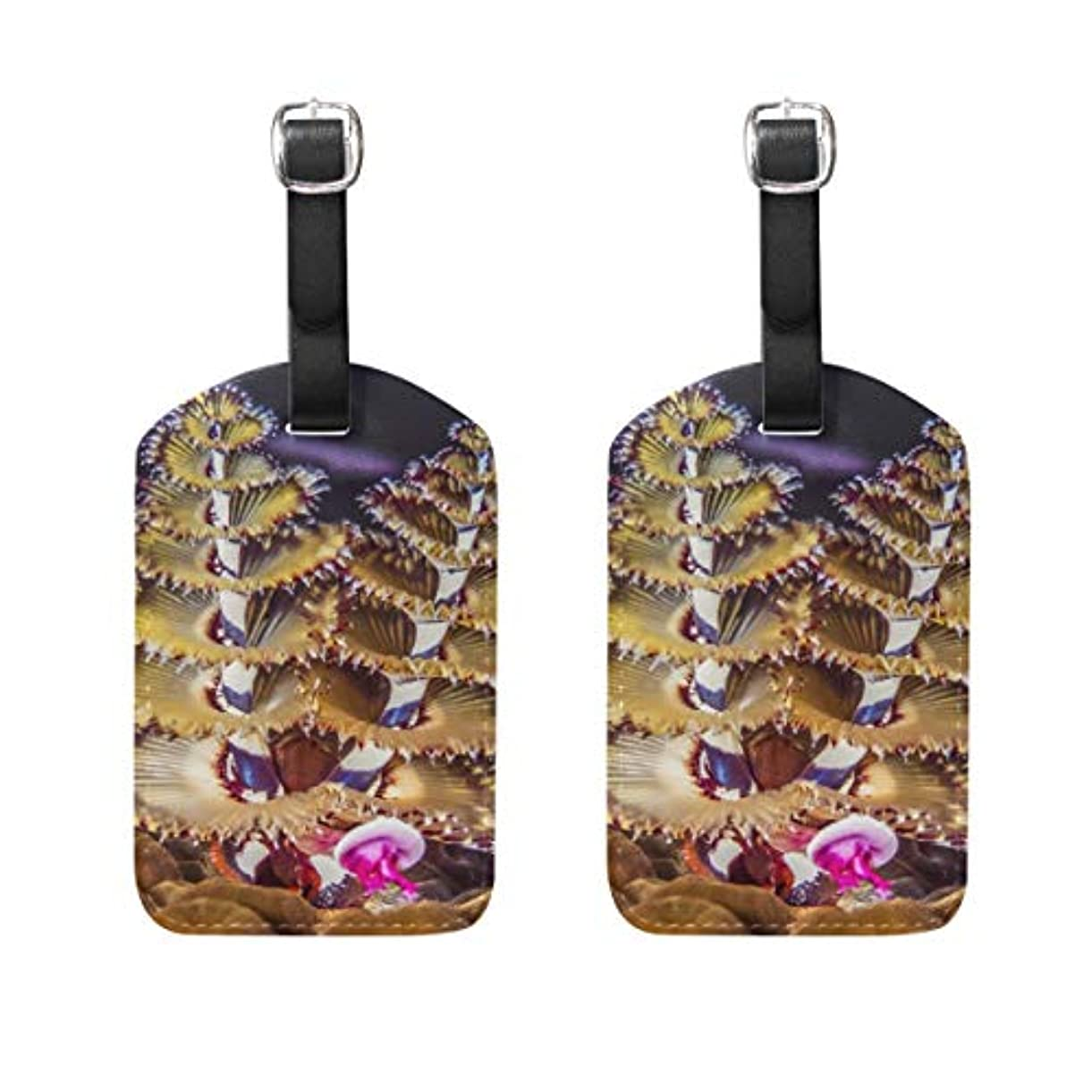 長いです十分アフリカ偽ネイル24個ファッションフェイク釘付のり女性DIYのネイルアートマーブルブルーオーシャンスマッジは、人工爪のヒント偽の釘をデザイン